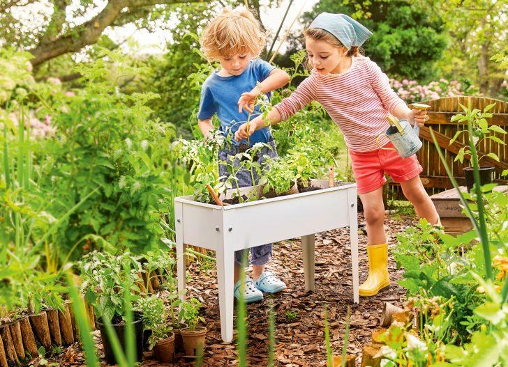 Medium Size of Aldi Sd Balkon Und Gartentipps Presseportal Relaxsessel Garten Hochbeet Wohnzimmer Hochbeet Aldi