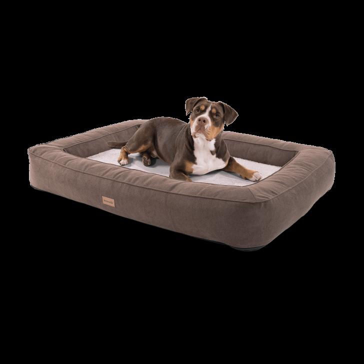 Medium Size of Hundebett Flocke Orthopdisches Bruno Xl Mit Waschbarem Bezug Brunoliede Wohnzimmer Hundebett Flocke