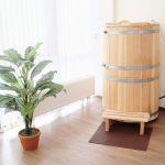 Mini Sauna Test Empfehlungen 04 20 Wellnessbibel Velux Fenster Einbauen Bett Selber Bauen 180x200 Kopfteil Zusammenstellen Regale Bodengleiche Dusche Wohnzimmer Sauna Selber Bauen