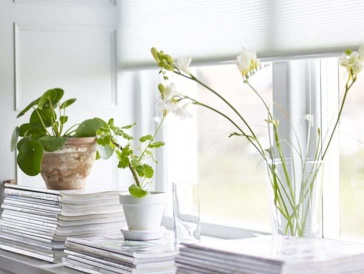 Medium Size of Fensterbank Dekorieren Deko Fr Fensterbnke Schnsten Ideen Sie Planungswelten Wohnzimmer Fensterbank Dekorieren