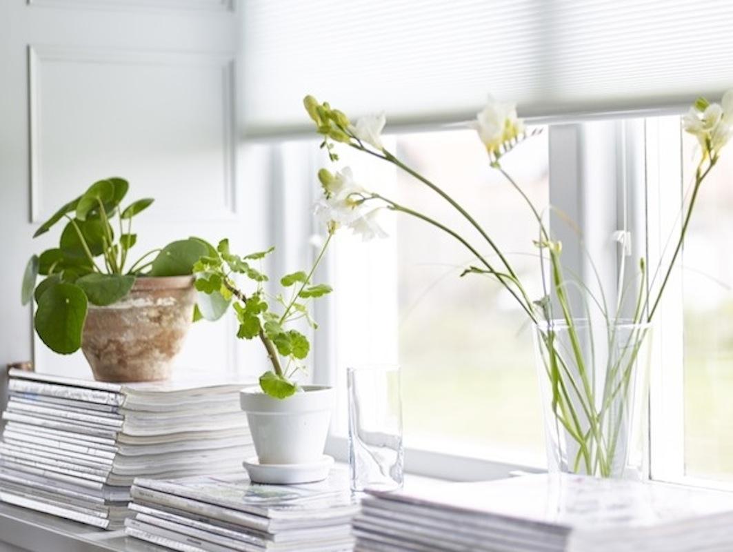 Full Size of Fensterbank Dekorieren Deko Fr Fensterbnke Schnsten Ideen Sie Planungswelten Wohnzimmer Fensterbank Dekorieren