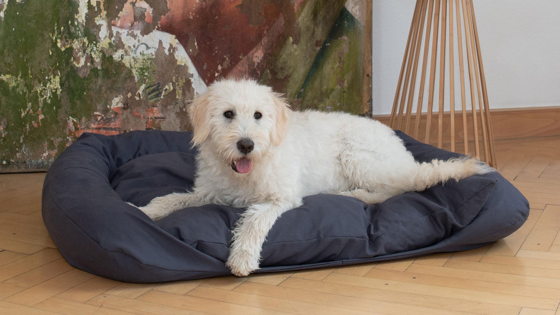 Full Size of Hundebett Flocke Zooplus 90 Cm 125 Kaufen Bitiba Xxl Wolke 120 Cuma Mit Abgesenktem Einstieg Und Randrolle Wohnzimmer Hundebett Flocke