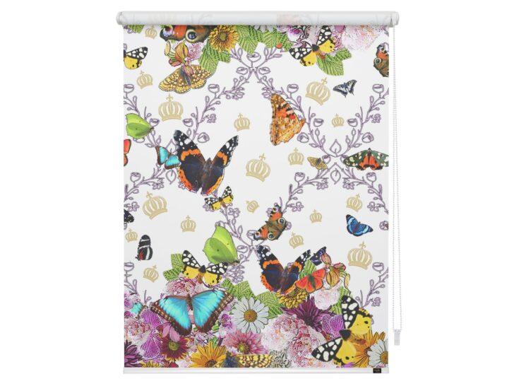 Medium Size of Pomps By Lichtblick Klemmfirollo Butterfly World Raffrollo Küche Rollo Wohnzimmer Rollos Für Fenster Insektenschutzrollo Regal Kinderzimmer Weiß Ohne Bohren Kinderzimmer Rollo Kinderzimmer
