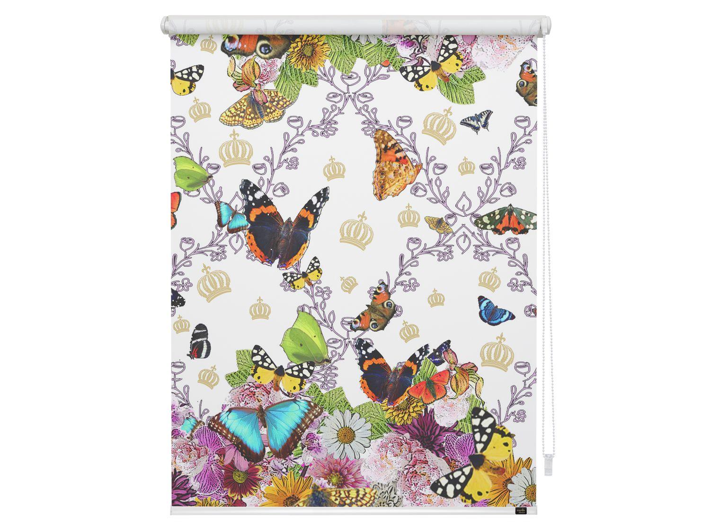 Full Size of Pomps By Lichtblick Klemmfirollo Butterfly World Raffrollo Küche Rollo Wohnzimmer Rollos Für Fenster Insektenschutzrollo Regal Kinderzimmer Weiß Ohne Bohren Kinderzimmer Rollo Kinderzimmer