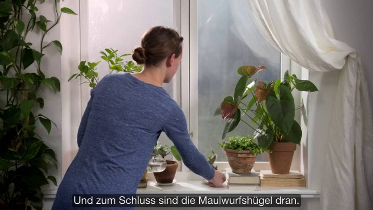 Medium Size of Ikea Geheimtipps Eines Inneneinrichters Fensterbank Gestalten Wohnzimmer Fensterbank Dekorieren