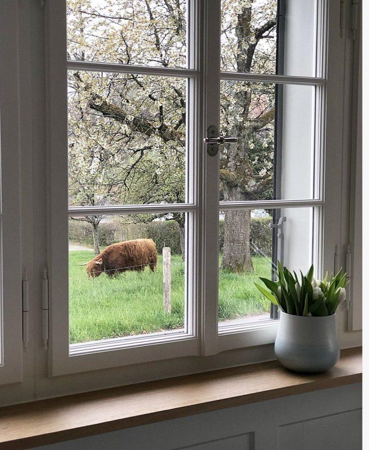 Medium Size of Schnsten Ideen Fr Fensterbank Fensterbrett Deko Wohnzimmer Fensterbank Dekorieren