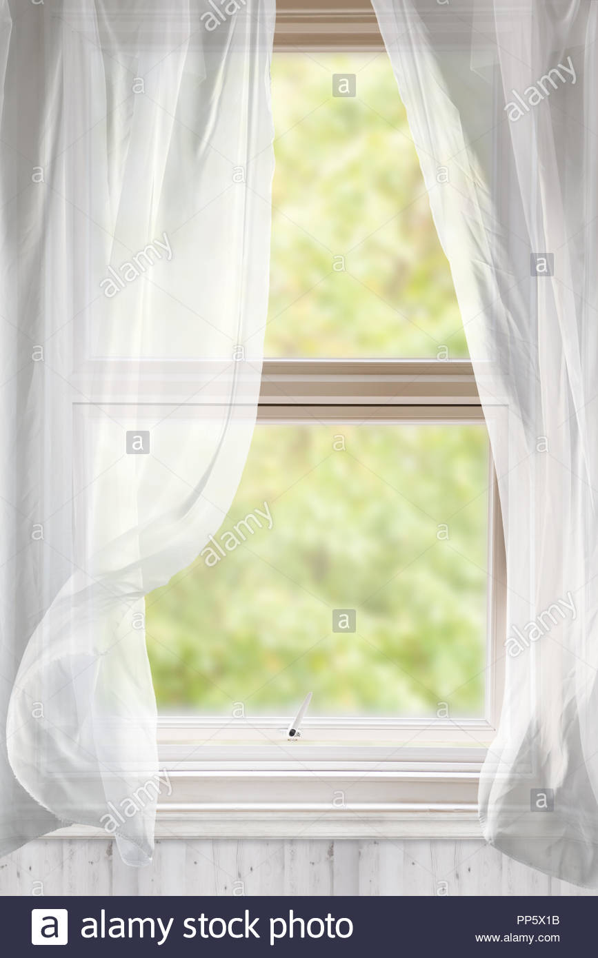 Full Size of Gardinen Fenster Mit Voile Weht Im Wind Ffnen Stockfoto Einbruchschutz Sonnenschutz Einbruchsichere Sicherheitsfolie Schüco Kaufen Auf Maß Stange Wohnzimmer Gardinen Fenster