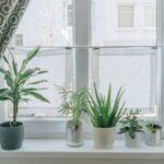 Vorhänge Wohnzimmer Wohnzimmer Diy Wohnzimmer Mini Fenster Vorhnge Als Sichtschutz Das Led Lampen Hängeschrank Deckenlampe Stehleuchte Fototapete Hängeleuchte Vinylboden Tisch Indirekte