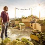 Urban Gardening Hornbach Garten Hochbeet Wohnzimmer Hochbeet Hornbach
