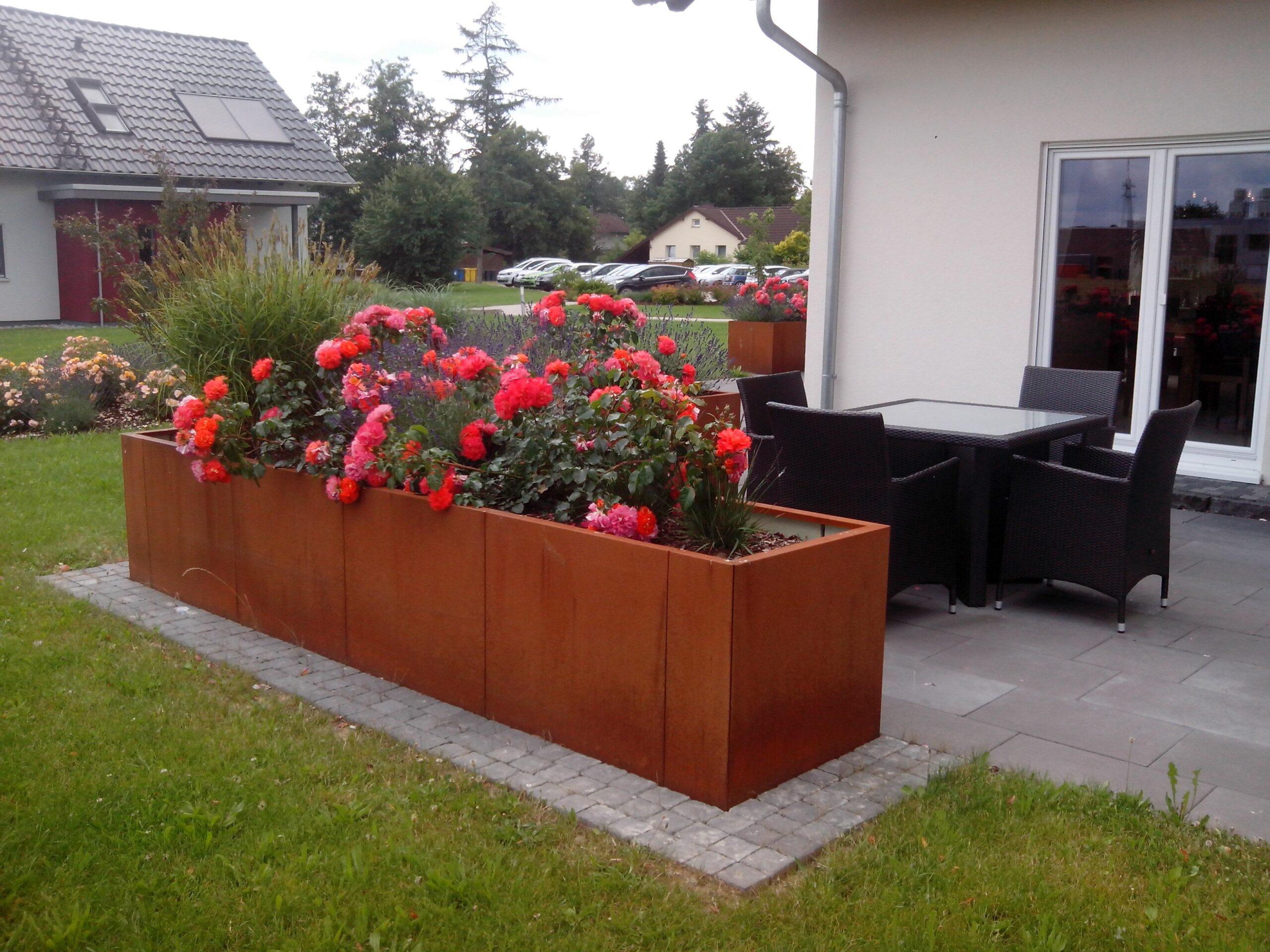 Full Size of Hochbeet Sichtschutz Garten Sichtschutzfolie Fenster Einseitig Durchsichtig Holz Für Im Sichtschutzfolien Wpc Wohnzimmer Hochbeet Sichtschutz