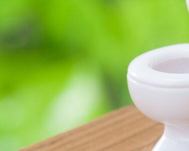 Dusch Wc Test Dusche Dusch Wc Testsieger 2019 Test Testberichte 2017 Toto 2018 Schweiz Esslingen Stiftung Warentest Aufsatz Produkte Im Vergleich 2020 Heimwerkerde Glasabtrennung