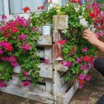 Sichtschutz Paletten Wohnzimmer Sichtschutz Paletten Bepflanzen So Gestalten Sie Ihren Eigenen Blickfang Garten Fenster Sichtschutzfolie Einseitig Durchsichtig Bett Aus Kaufen Für Wpc