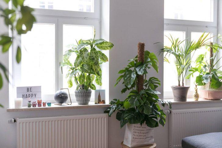 Medium Size of Fensterbank Dekorieren Fruhling Wohnzimmer Fensterbank Dekorieren