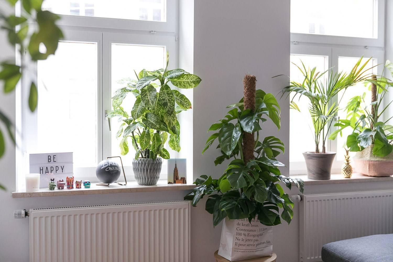 Full Size of Fensterbank Dekorieren Fruhling Wohnzimmer Fensterbank Dekorieren