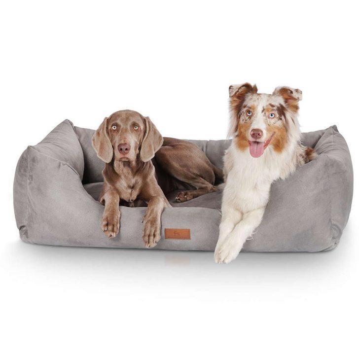 Medium Size of Hundebett Flocke Knuffelwuff Dreamline Bertis Hundeshop Wohnzimmer Hundebett Flocke