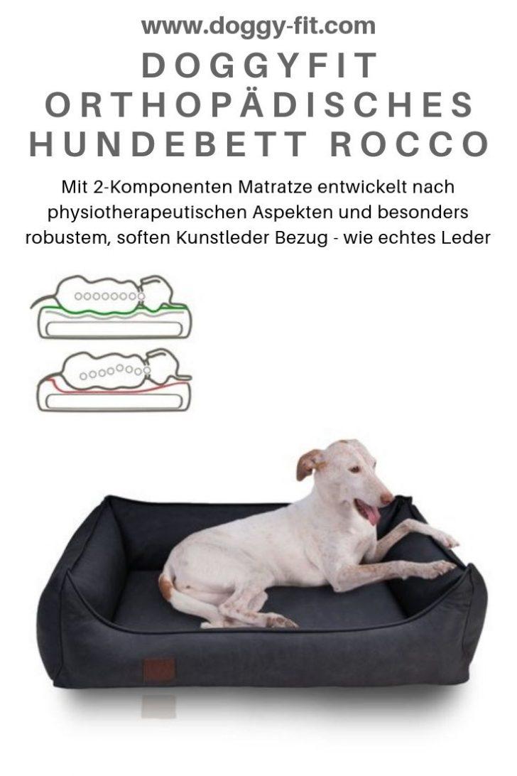 Medium Size of Hundebett Flocke Orthopdisches Rocco Wohnzimmer Hundebett Flocke