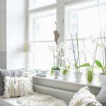 Fensterbnke Dekorieren 11 Style Tricks Und Ideen In 2020 Wohnzimmer Fensterbank Dekorieren