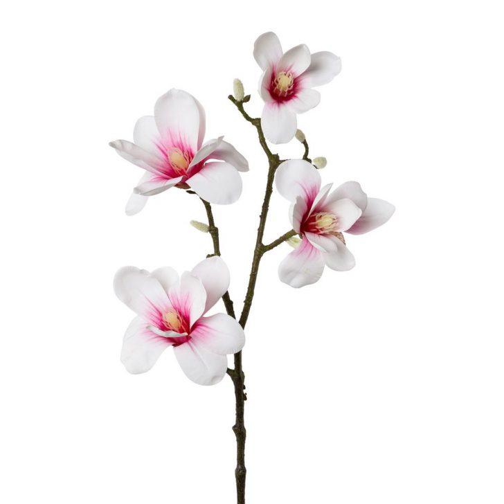 Medium Size of Magnolia Farbe Kunstblume Magnolie Rosa Wohnzimmer Magnolia Farbe