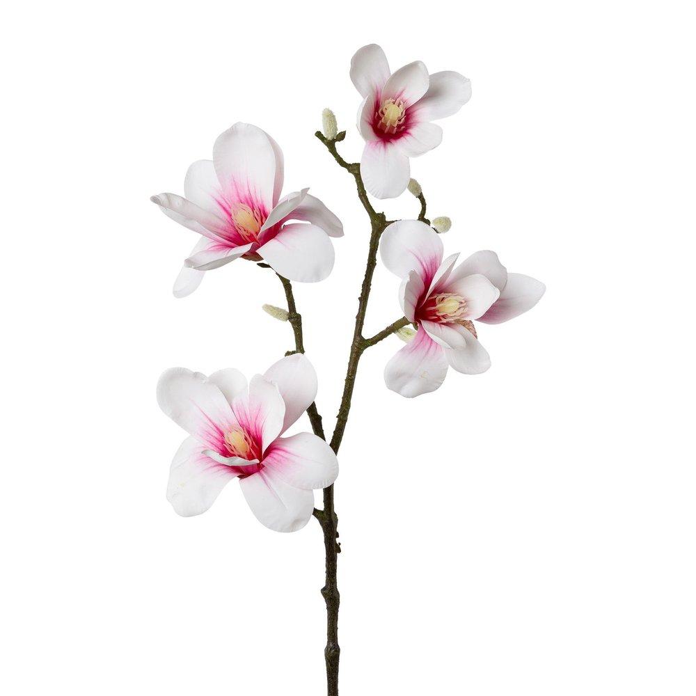 Full Size of Magnolia Farbe Kunstblume Magnolie Rosa Wohnzimmer Magnolia Farbe