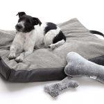 Hundebett Flocke Travel Bed Reisekissen Grau S M Dogs In The City Wohnzimmer Hundebett Flocke