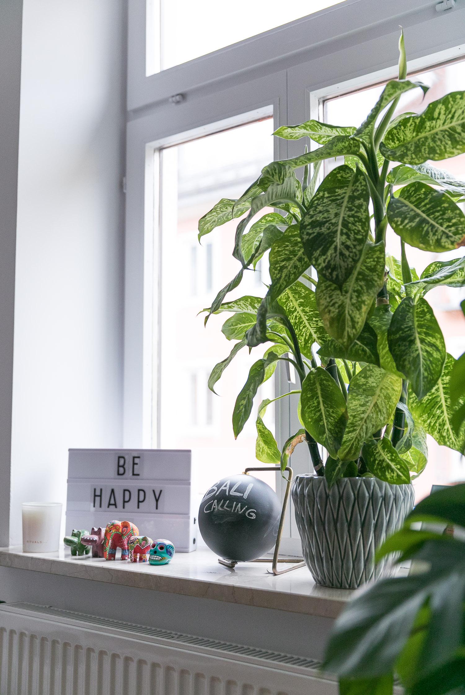 Full Size of Dekoration Fensterbank Pflanzen 6 Josie Loves Wohnzimmer Fensterbank Dekorieren