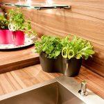 Krutertopf Duo Anthrazit Brussels Herbs Online Kaufen Bestellen Kräutertopf Küche Wohnzimmer Kräutertopf