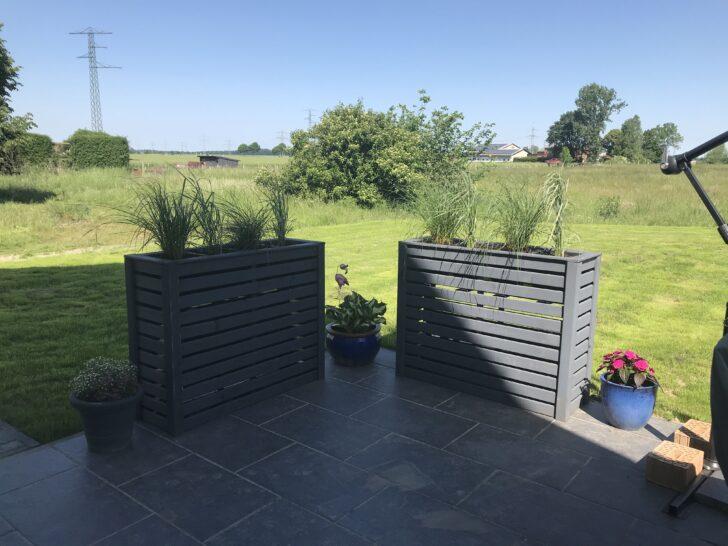 Medium Size of Hochbeet Sichtschutz Pflanzen Für Garten Sichtschutzfolien Fenster Sichtschutzfolie Einseitig Durchsichtig Wpc Holz Im Wohnzimmer Hochbeet Sichtschutz