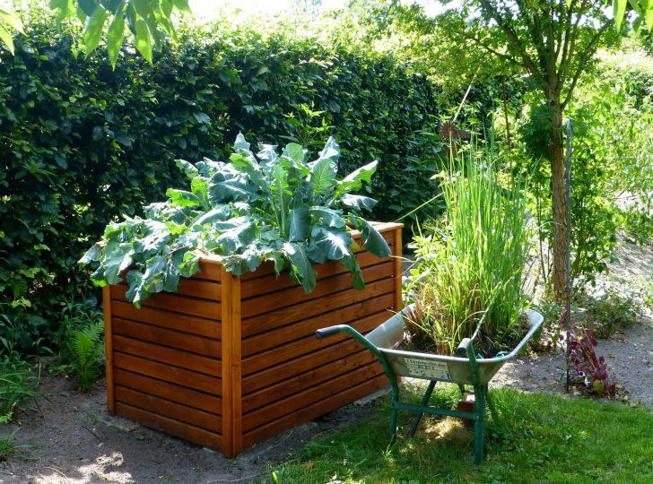 Medium Size of Hochbeet Hornbach Aus Holz Test Empfehlungen 04 20 Gartenspring Garten Wohnzimmer Hochbeet Hornbach