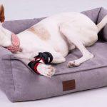 Hundebett Flocke Doggy Fit Orthopdisches Fitness Wohnzimmer Hundebett Flocke