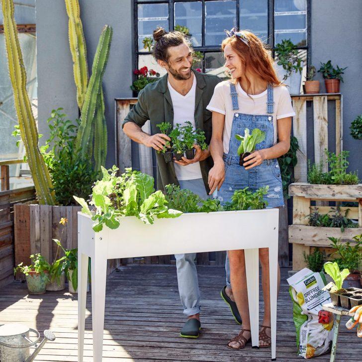Hochbeet Gnstig Bei Aldi Nord Relaxsessel Garten Wohnzimmer Hochbeet Aldi