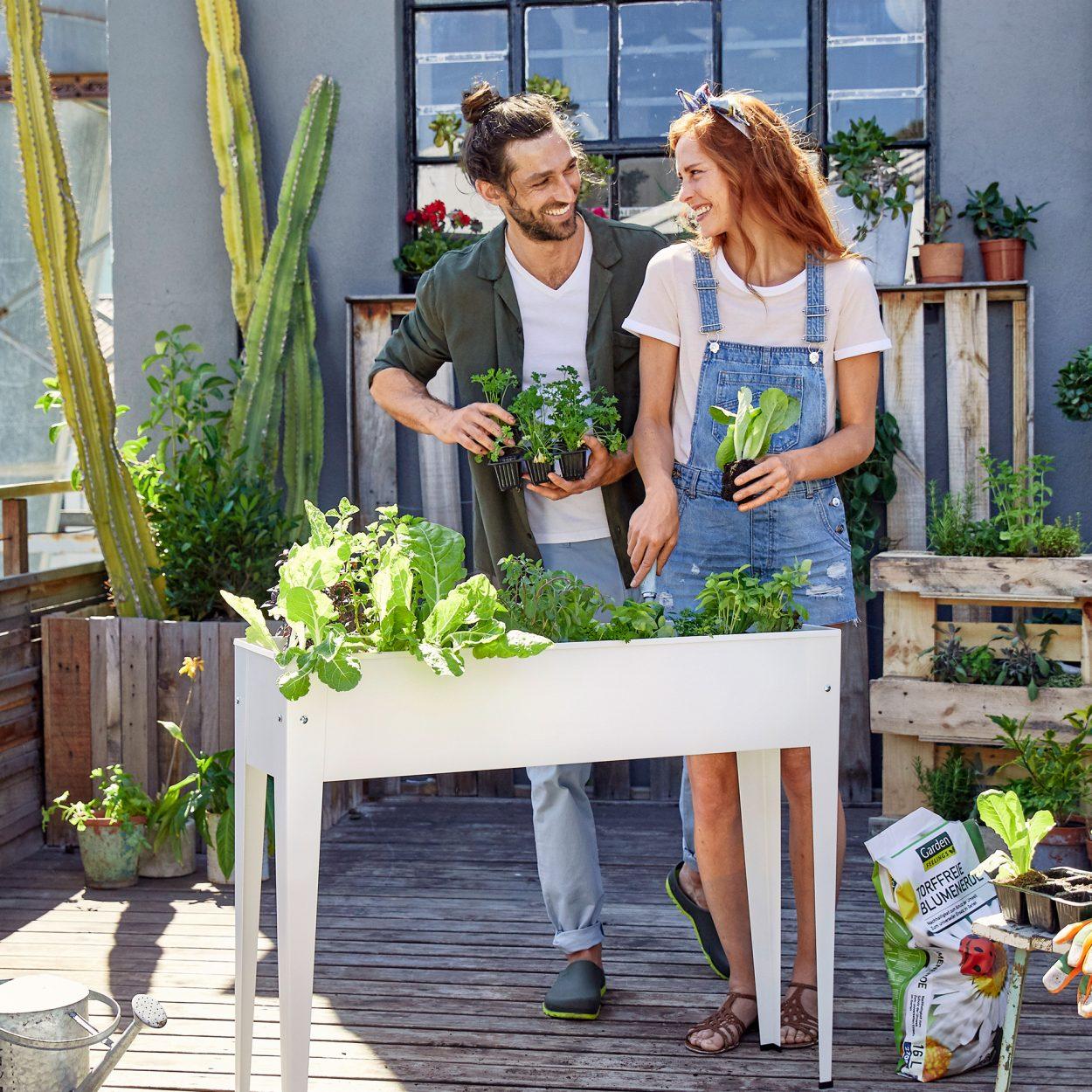 Full Size of Hochbeet Gnstig Bei Aldi Nord Relaxsessel Garten Wohnzimmer Hochbeet Aldi