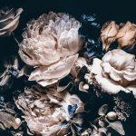 Fototapete Blumen Wohnzimmer Fototapete Blumen Vlies 3d Schlafzimmer Blumenwiese Weiss Kaufen Vintage Rosa Fototapeten Dunkel Bunte Rosen Komar Schwarz Wanddekorationde Wohnzimmer Küche