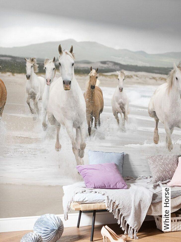 Medium Size of White Horse Mdchen Pferde Zimmer Regal Kinderzimmer Sofa Regale Weiß Kinderzimmer Kinderzimmer Pferd
