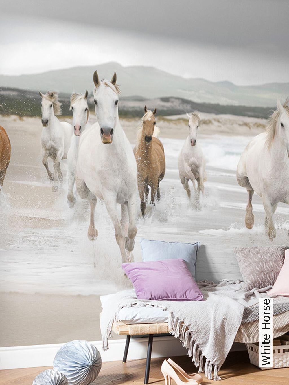 Full Size of White Horse Mdchen Pferde Zimmer Regal Kinderzimmer Sofa Regale Weiß Kinderzimmer Kinderzimmer Pferd