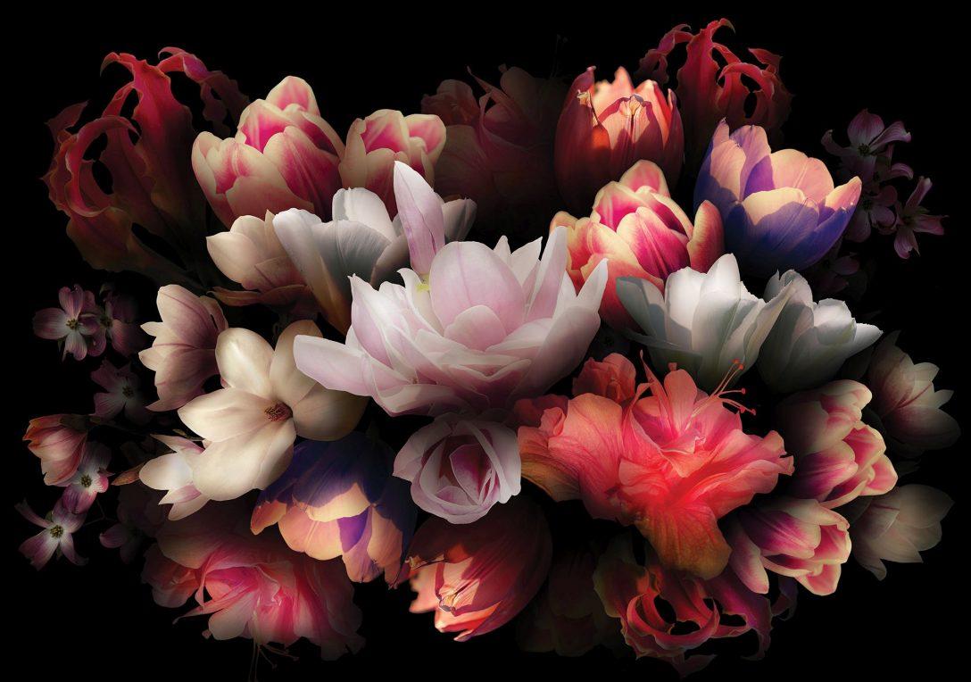 Large Size of Fototapete Blumen Dekoriere Deine Welt Fenster Fototapeten Wohnzimmer Schlafzimmer Küche Wohnzimmer Fototapete Blumen