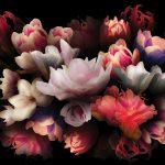 Fototapete Blumen Dekoriere Deine Welt Fenster Fototapeten Wohnzimmer Schlafzimmer Küche Wohnzimmer Fototapete Blumen