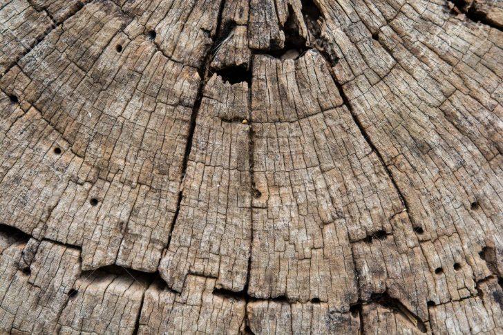 Medium Size of Schöne Tapeten Schne Holz Fr Hintergrund Und Tapete Zwecke Schlafzimmer Betten Wohnzimmer Mein Schöner Garten Abo Für Küche Fototapeten Die Wohnzimmer Schöne Tapeten