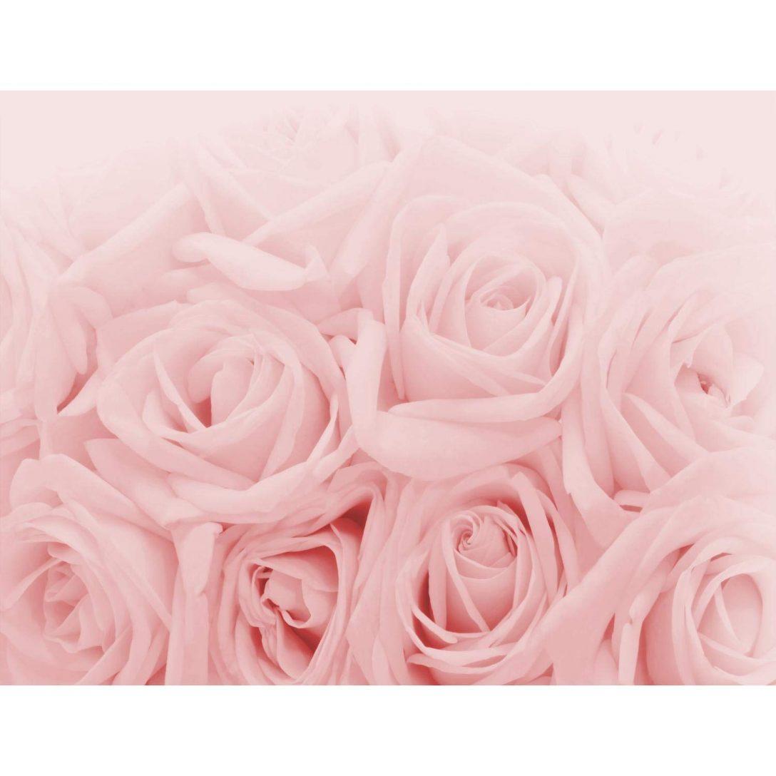 Large Size of Fototapete Blumen Rosen Rosa Vlies Wand Tapete Wohnzimmer Fenster Fototapeten Schlafzimmer Küche Wohnzimmer Fototapete Blumen