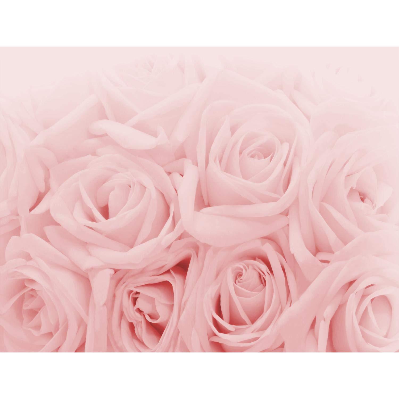 Full Size of Fototapete Blumen Rosen Rosa Vlies Wand Tapete Wohnzimmer Fenster Fototapeten Schlafzimmer Küche Wohnzimmer Fototapete Blumen