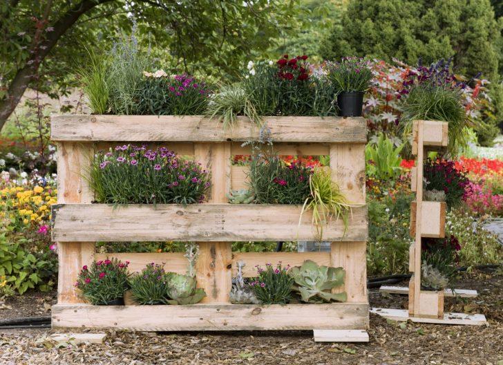 Medium Size of Sichtschutz Paletten Bepflanzen So Gestalten Sie Ihren Eigenen Blickfang Garten Wpc Holz Bett Aus Kaufen Im Sichtschutzfolien Für Fenster Regale Europaletten Wohnzimmer Sichtschutz Paletten