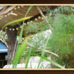 Gartenschaukel Bauen Hollywoodschaukel Selber Velux Fenster Einbauen Boxspring Bett 140x200 Pool Im Garten Rolladen Nachträglich 180x200 Neue Küche Kopfteil Wohnzimmer Gartenschaukel Bauen