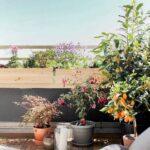 Kunst Im Garten Selber Machen Pool Bauen Wandbilder Wohnzimmer Skulpturen Schlafzimmer Teppich Lounge Set Paravent Loungemöbel Regal Kinderzimmer Wohnzimmer Kunst Im Garten Selber Machen