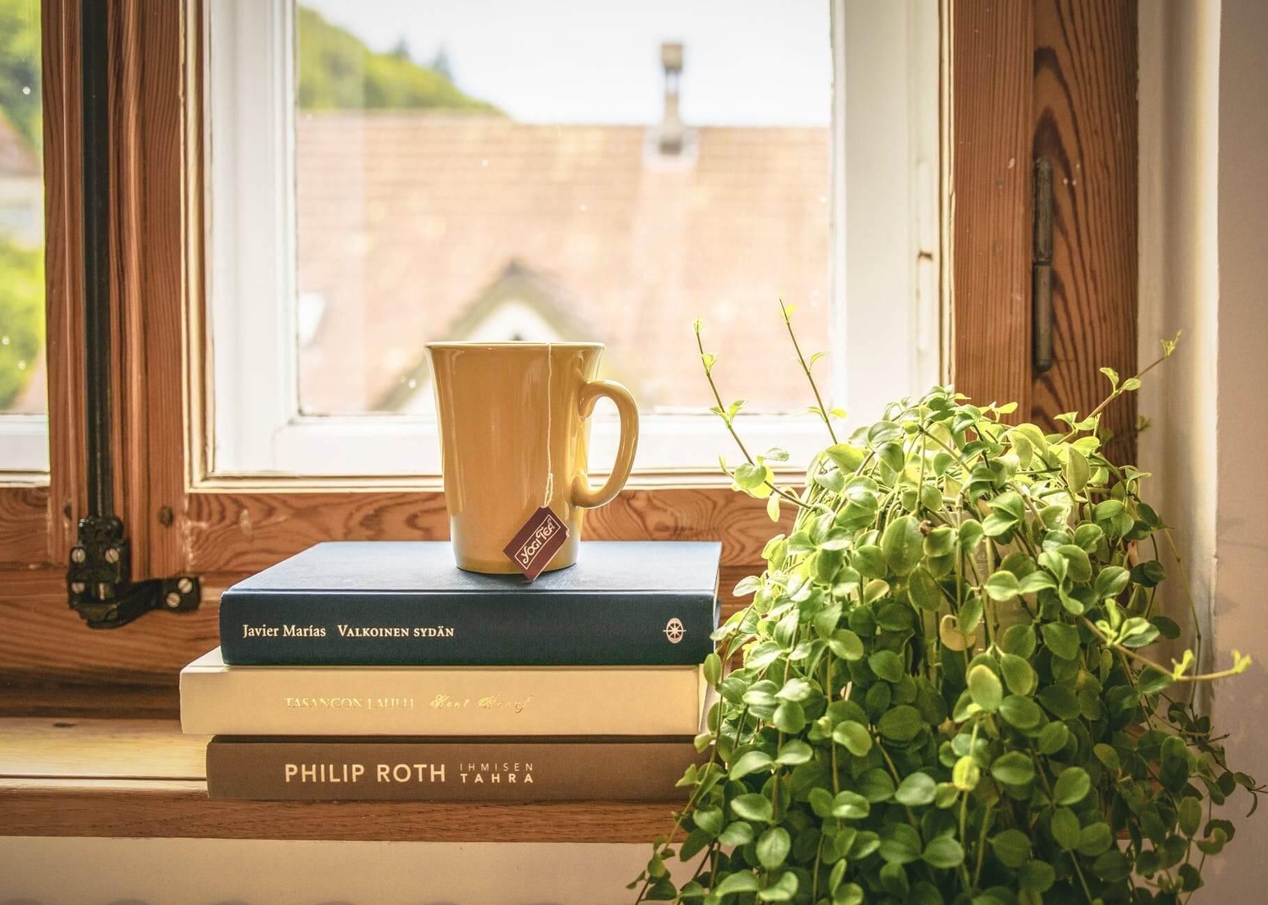 Full Size of Das Arrangement Und Dekoration Des Fensters In Der Kche Polnische Fenster Niederdruck Armatur Küche Weiße Lüftung Rolladen Nachträglich Einbauen Holz Wohnzimmer Küche Fenster