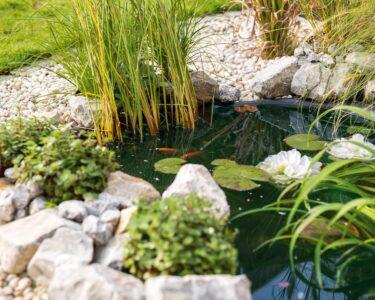 Solar Springbrunnen Obi Wohnzimmer Solar Springbrunnen Obi Brunnen Fenster Regale Immobilienmakler Baden Einbauküche Nobilia Immobilien Bad Homburg Küche Mobile