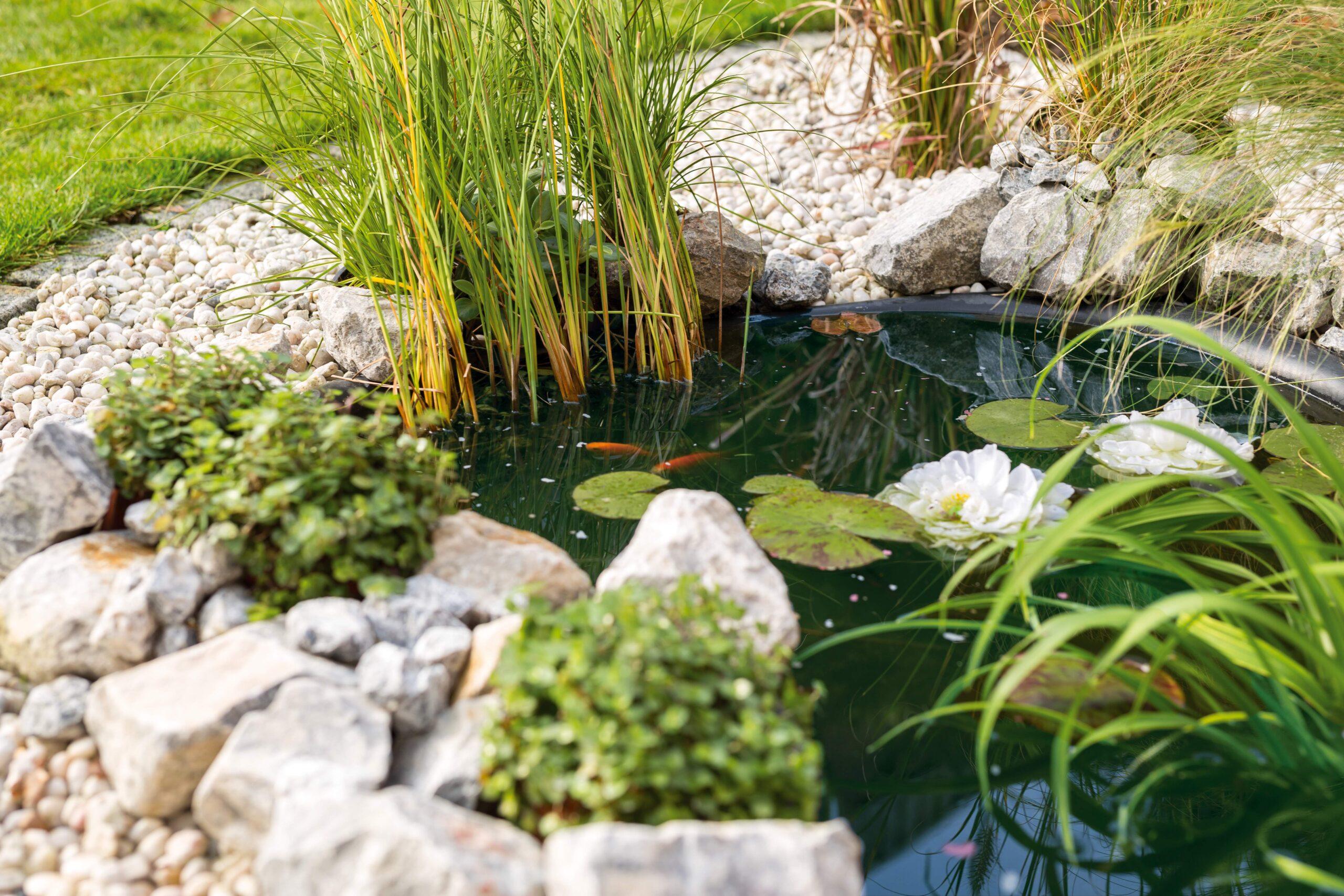 Full Size of Solar Springbrunnen Obi Brunnen Fenster Regale Immobilienmakler Baden Einbauküche Nobilia Immobilien Bad Homburg Küche Mobile Wohnzimmer Solar Springbrunnen Obi