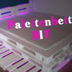 Palettenbett Bauen 160x200 Anleitung Wohnzimmer Palettenbett Mit Led Beleuchtung Diy Jbtv Youtube Küche Bauen Bett Bettkasten 160x200 Dusche Einbauen Schubladen Lattenrost Und Matratze Selber 140x200 Neue