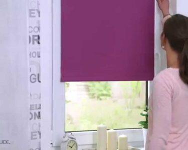 Fenster Rollos Innen Ikea Wohnzimmer Lichtblick Thermo Rollo Klemmfiohne Bohren Verdunkelung Fenster Rollos Sichtschutzfolie Sonnenschutzfolie Innen Ebay Schallschutz Insektenschutzrollo