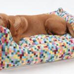 Dogs In The City Hundebett Boxbed Funky Checks Eckige Regal 40 Cm Breit Bett 120x200 Mit Matratze Und Lattenrost 120 Fenster 120x120 Weiß 120x190 Esstisch Wohnzimmer Hundebett Flocke 120 Cm
