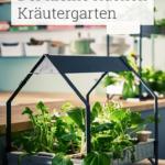 Wohnzimmer Küchenkräutergarten