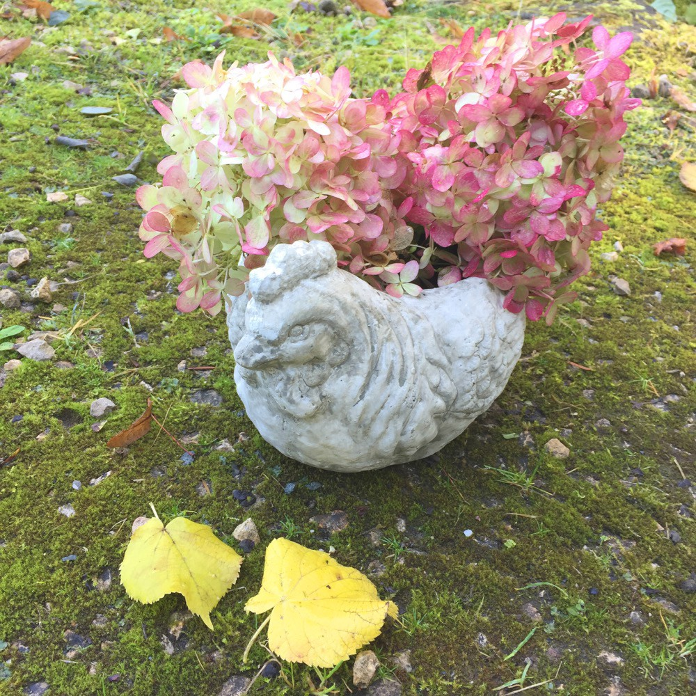 Full Size of Kräutertöpfe Ein Hbscher Blumentopf Henne Zur Blumenbepflanzung Auf Der Terrasse Wohnzimmer Kräutertöpfe